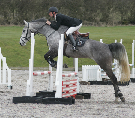 Eventer For Sale