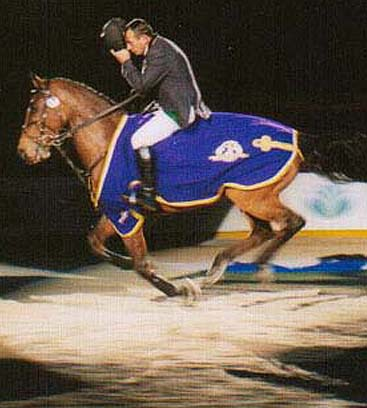 Leading Showjumper Of The Year - Barry Bug