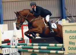 Eventing Horse Competing Succefully